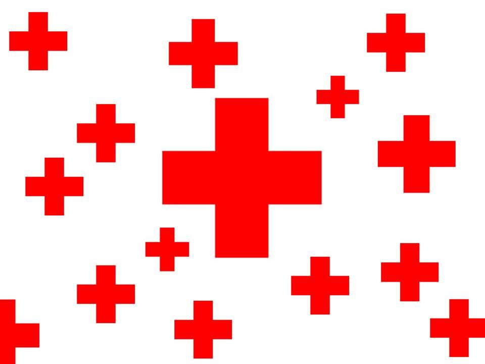 Día de la Cruz Roja Dominicana (1/2)