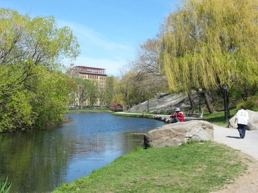 Summer Central Park Pond