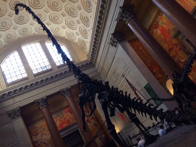 Museo Estadounidense de Historia Natural
